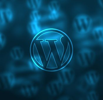 Starting With A Blog There Is No Other Option Better Than Wordpress!